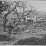 Ιστορικές φωτογραφίες της Γαλάτιστας από το 1916 - 309